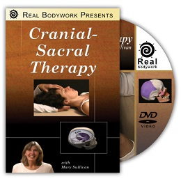 Cranial Sacral Therapy DVD