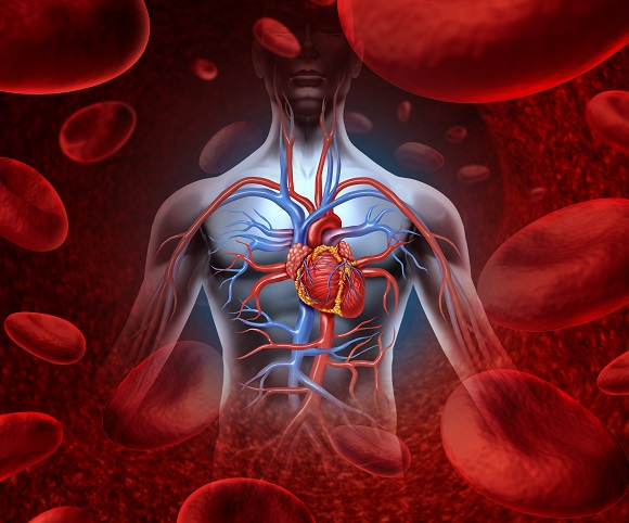 Hypertension, Cholesterol & Massage
